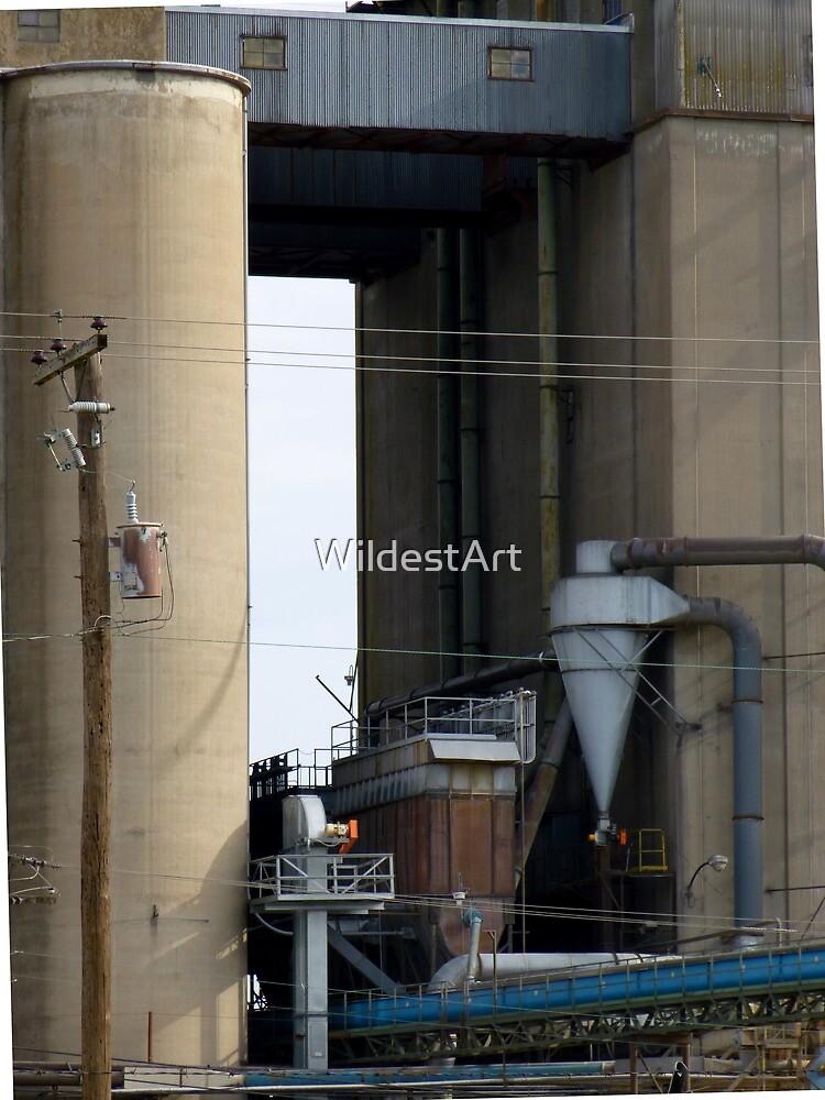 Mill by WildestArt