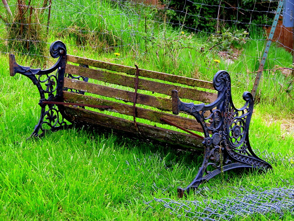 Retired Bench....Coquille, Oregon by Diane Arndt