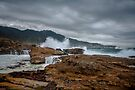 Point Lobos State Park by photosbyflood