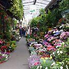 Typical Paris flower shop by bubblehex08