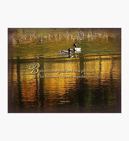 dwell in unity-Psalm 133:1(for Boston bombing victims) Photographic Print