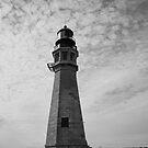 Buffalo Light house by Penny Fawver