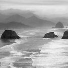 Pacific Ocean  by Danielle Morin