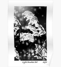 Light Brushes BW Poster