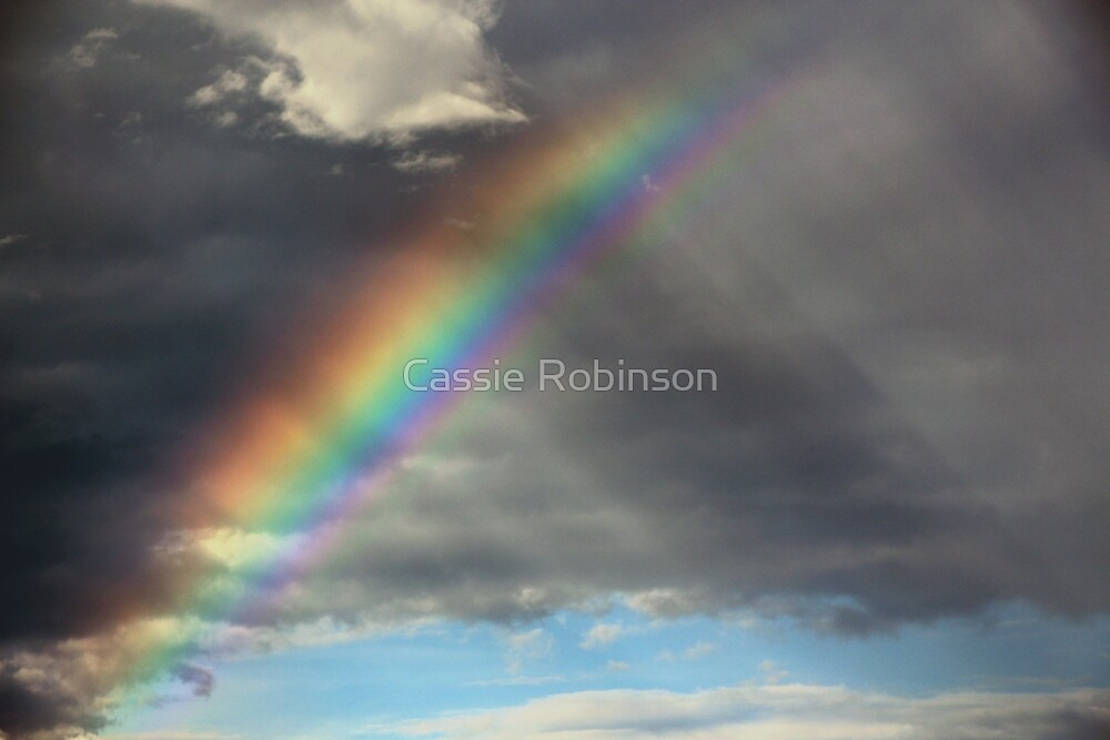 Rainbow and Rain by Cassie Robinson