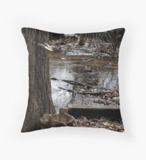 Old Fashioned Sugaring Throw Pillow