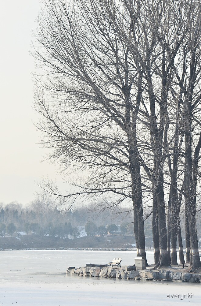 freezing and quiet winter at Old Summer Palace, Beijing by averynkh