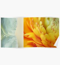 Spring diptych Poster