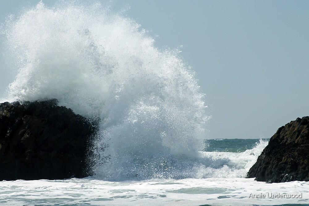 Big Splash by Annie Underwood