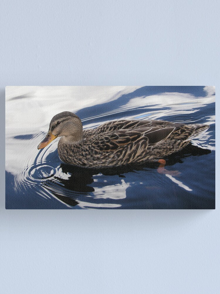 Alternate view of Duck Canvas Print