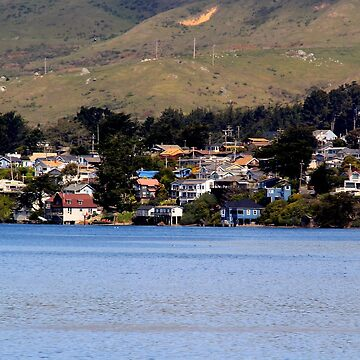 Bodega Bay by lenzart