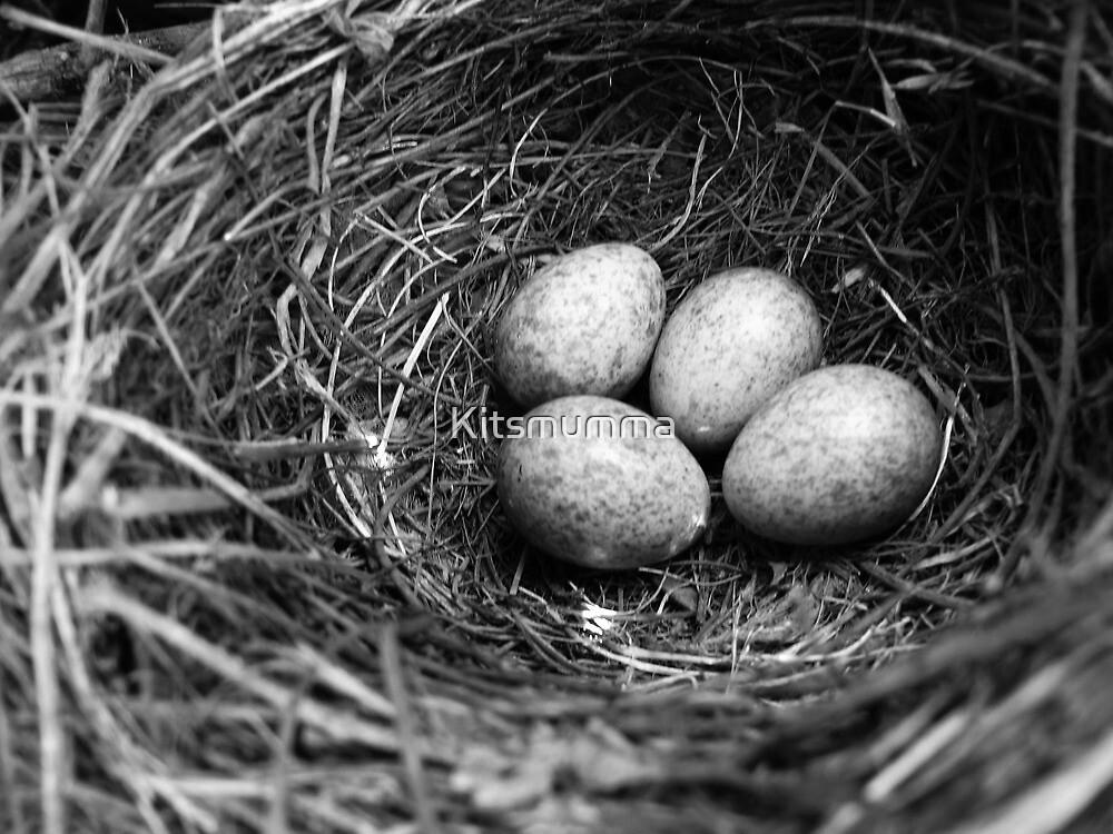 Nest by Kitsmumma