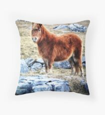 Beautiful Pony in Rocky Landscape Throw Pillow