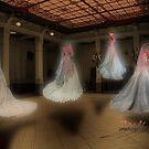 Danse Macabre by David Kessler