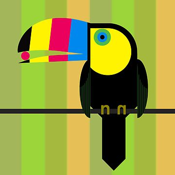 CMYK Toucan by scottpartridge