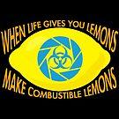 Combustible Lemons by Explicit Designs