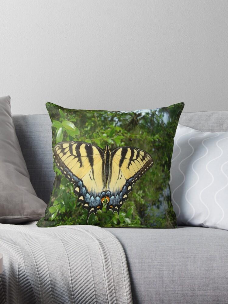 TIGER SWALLOWTAIL  by May Lattanzio