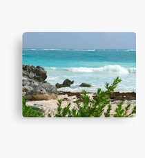 Incredible Colors of the Mexican Riviera Canvas Print