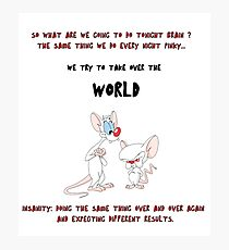 pinky and the brain insanity  Photographic Print