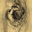 Tree Knot by pjwuebker