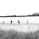 Cricket on an Australian Beach by Josie Jackson