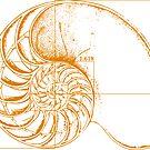 Fibonacci on a nautilus shell (orange) by funmaths