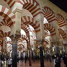 Cordoba Mezquita, Andalucia by Braedene