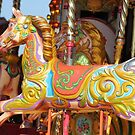 bright carousel horses by Perggals© - Stacey Turner