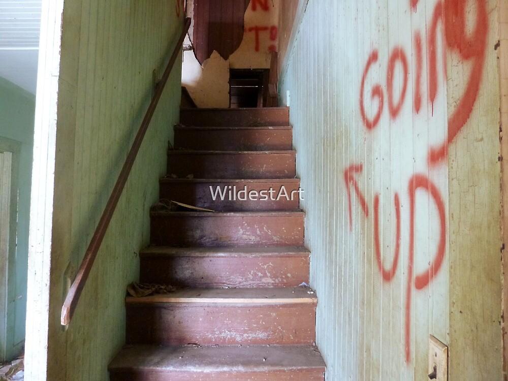 Going My Way? by WildestArt