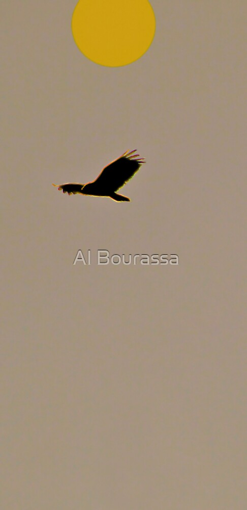 Carefree Mindo Hawk by Al Bourassa