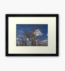 Brush and Sky Framed Print