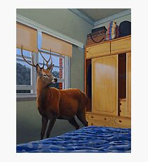 The Messenger, 2012, Oil on Linen, 76x61cm, 2012.  Photographic Print