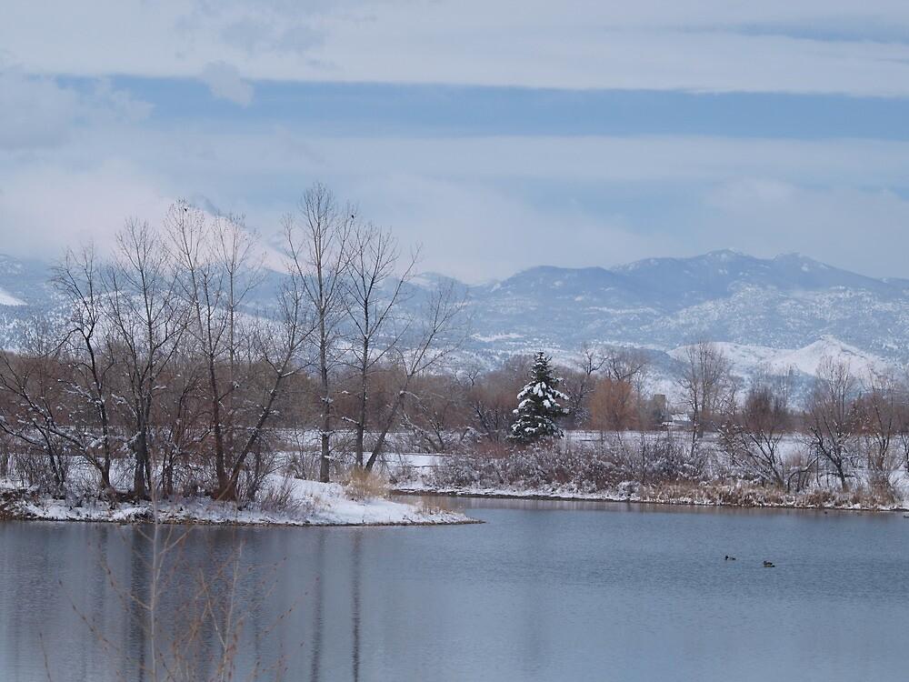 Winter (Alias Sprintime) by Barb Miller