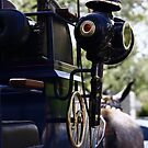 Sevilla Horse Carriage Details by fototaker