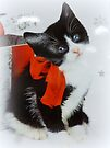 Kitten with red bow by ©The Creative  Minds