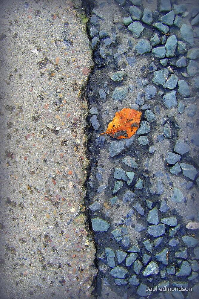 leaf in road by paul edmondson