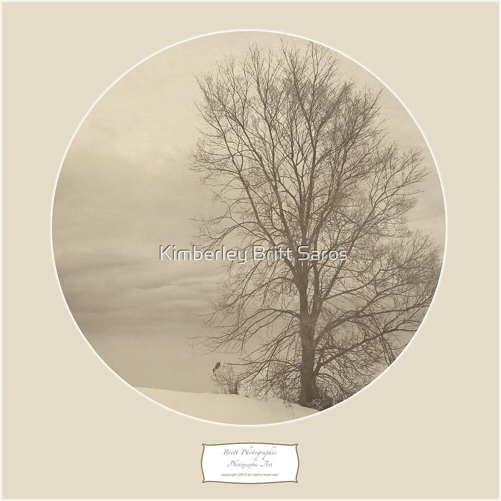 Winter Americana III by KBritt