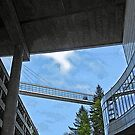 skybridge 2 by Bruce  Dickson