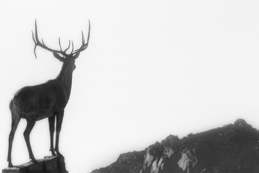 Buck Shot by Bob Larson