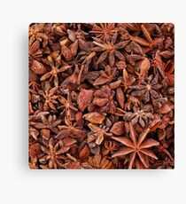 Star Anise Canvas Print