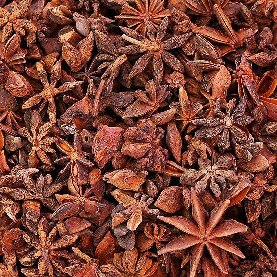 Star Anise by Natasha Davies-Walke