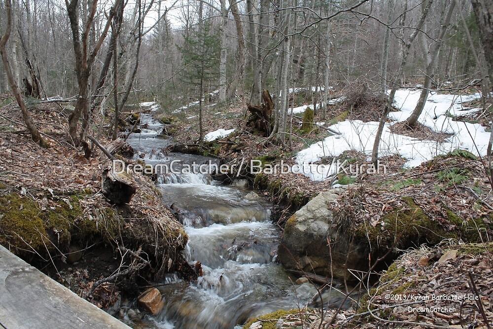 Water stream by DreamCatcher/ Kyrah
