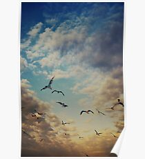 Florid Sky Poster