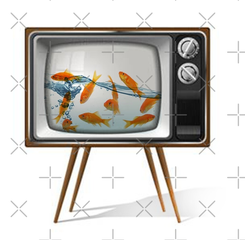 Gold fish tv 02 by Vin  Zzep