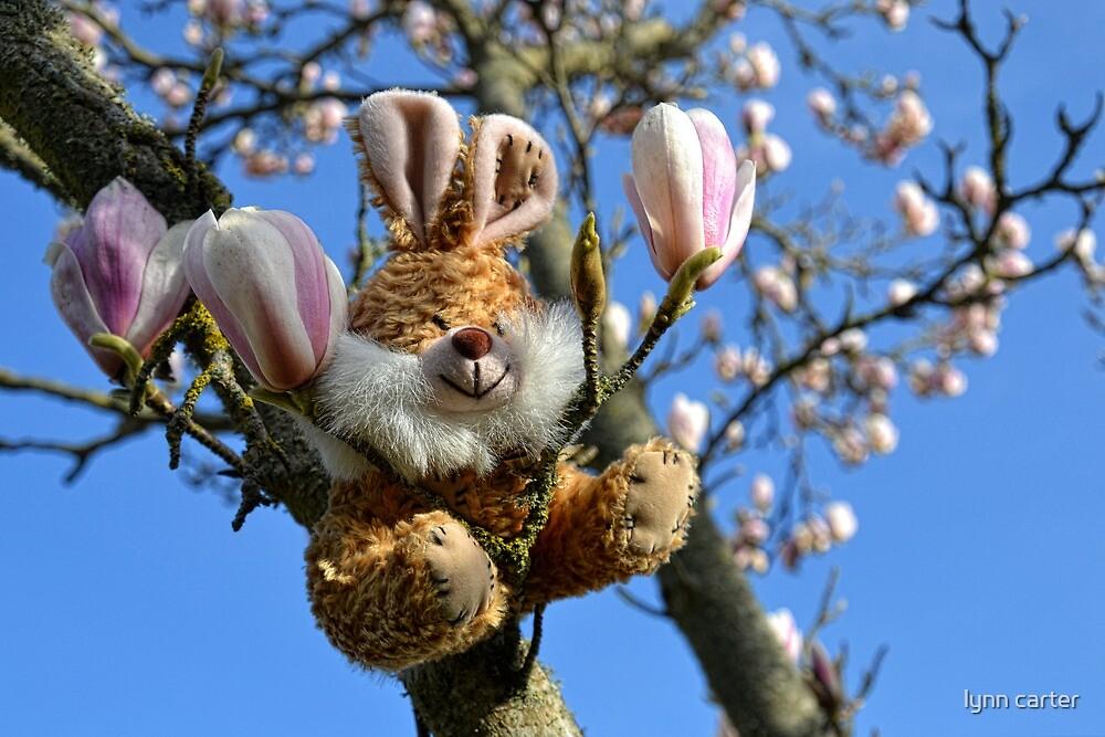 Yipee Springtime Is Here by lynn carter