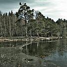 Frozen Loch an Eillen Aviemore by Doug Cook