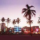 Miami Skyline by SandraWidner
