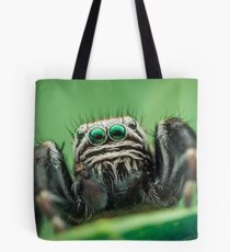 Evarcha arcuata male jumping spider Tote Bag