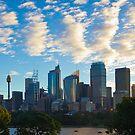 Sydney City Skyline by Llewellyn Cass