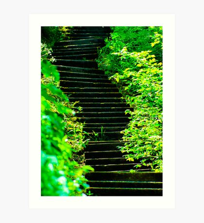Sunny steps in Scarborough Art Print